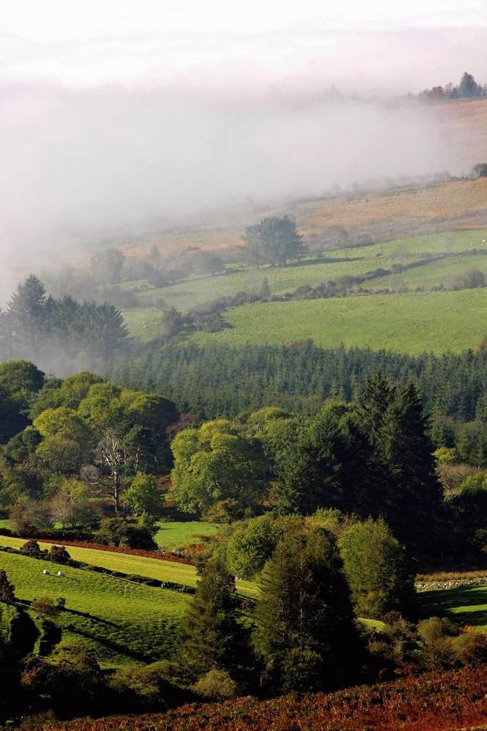 Stock Photo: 1889-65741 fog rolling into nire valley, clonmel, county tipperary, ireland