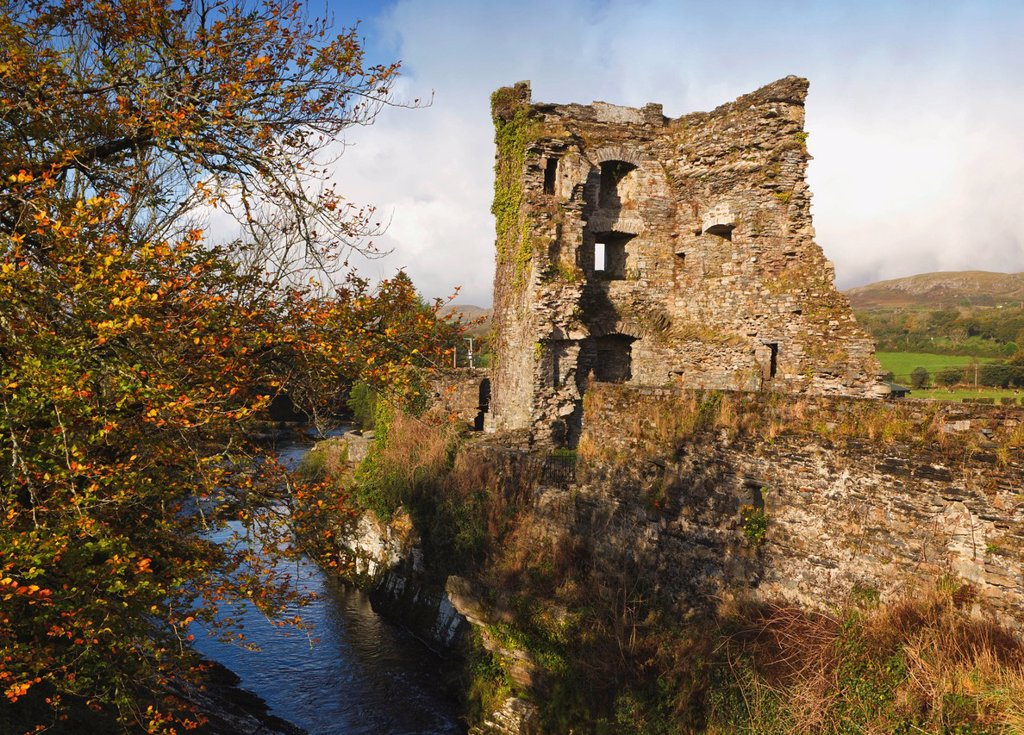 carriganass castle near kealkill o´sullivan beare clan ancestral home, county cork republic of ireland : Stock Photo