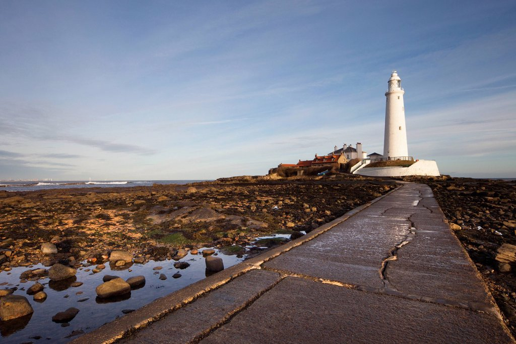 Stock Photo: 1889-74741 Paved Path To The Lighthouse On St. Mary´s Island, Northumberland England