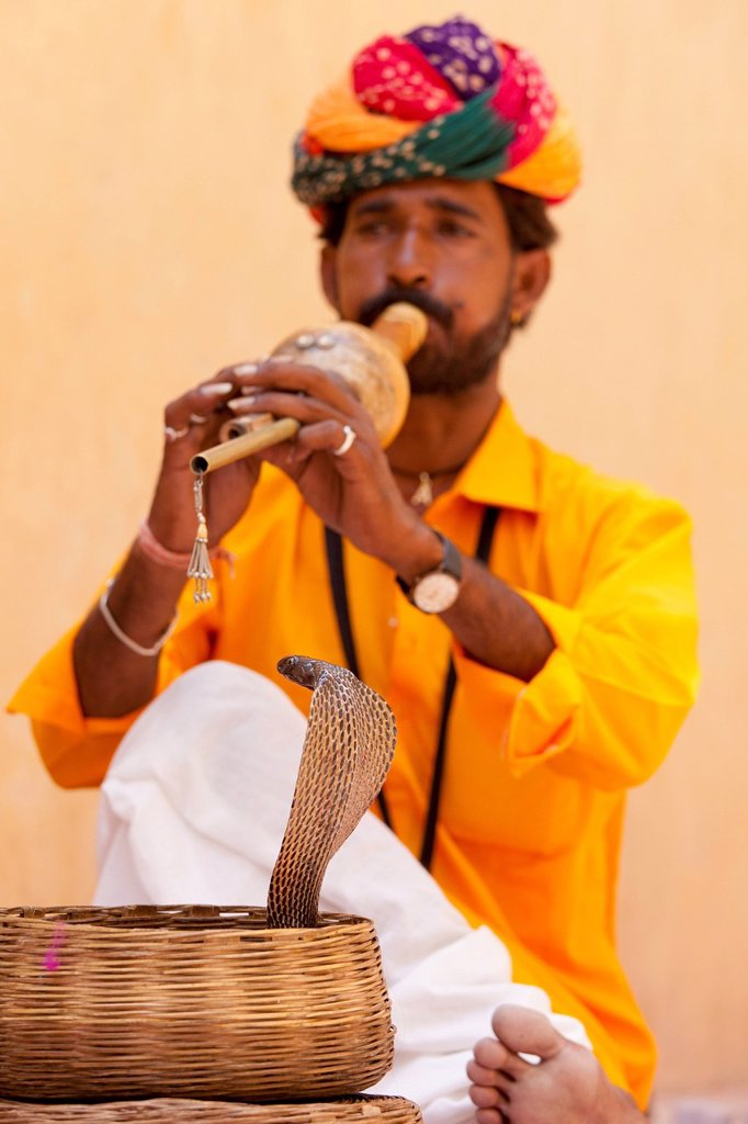 Stock Photo: 1889-76341 Snake charming, jaipur rajasthan india