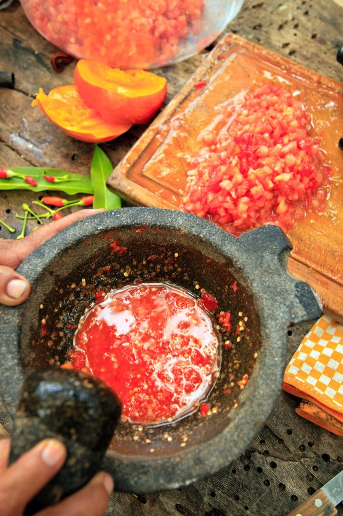 Stock Photo: 1889-79338 homemade salsa preparation at sierra la laguna near los cabos area, san jose del cabo baja california mexico