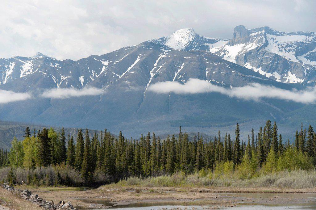 Stock Photo: 1889-79786 the canadian rocky mountains, jasper alberta canada