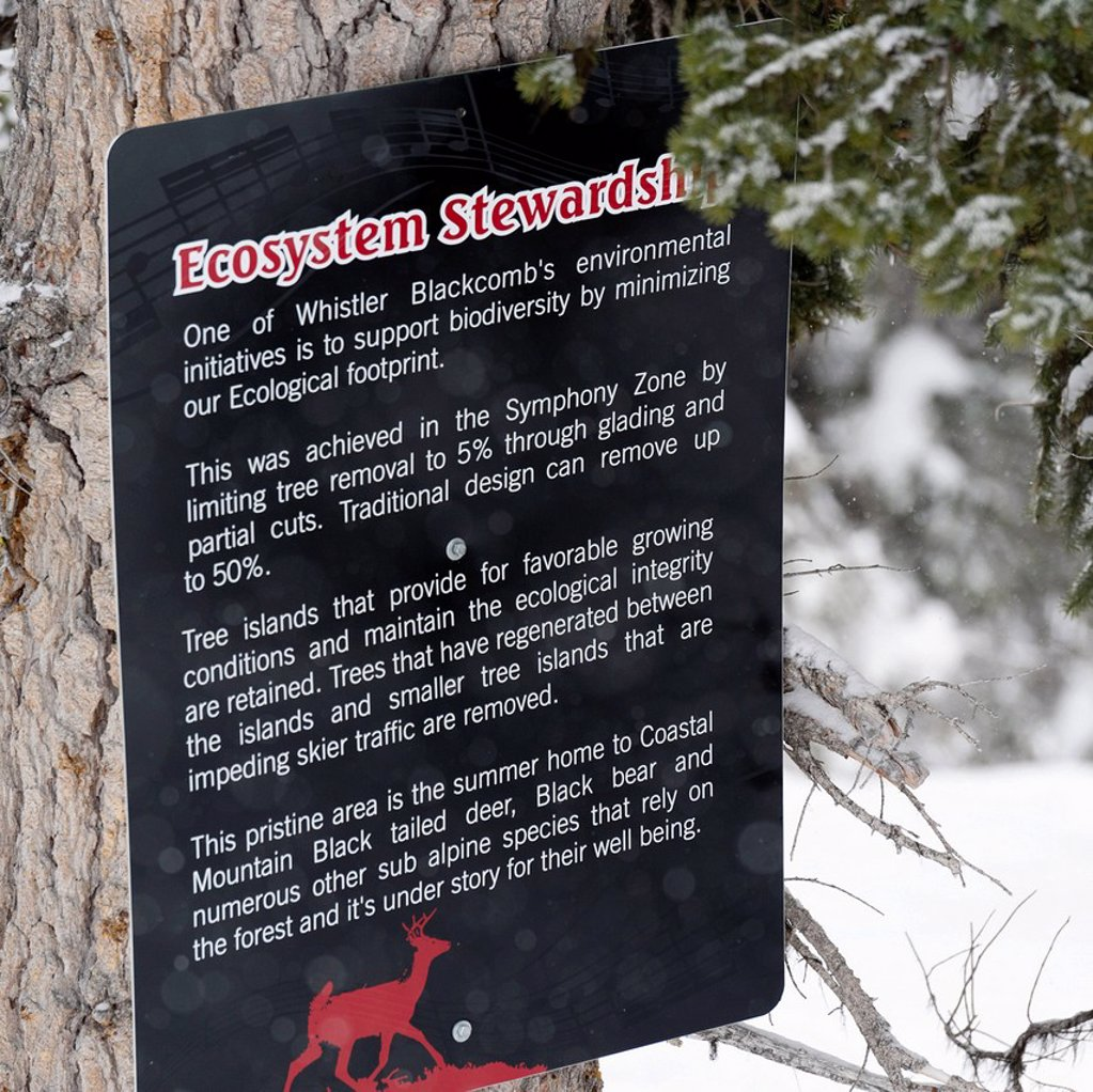 a sign about ecosystem stewardship posted on a tree, whistler british columbia canada : Stock Photo