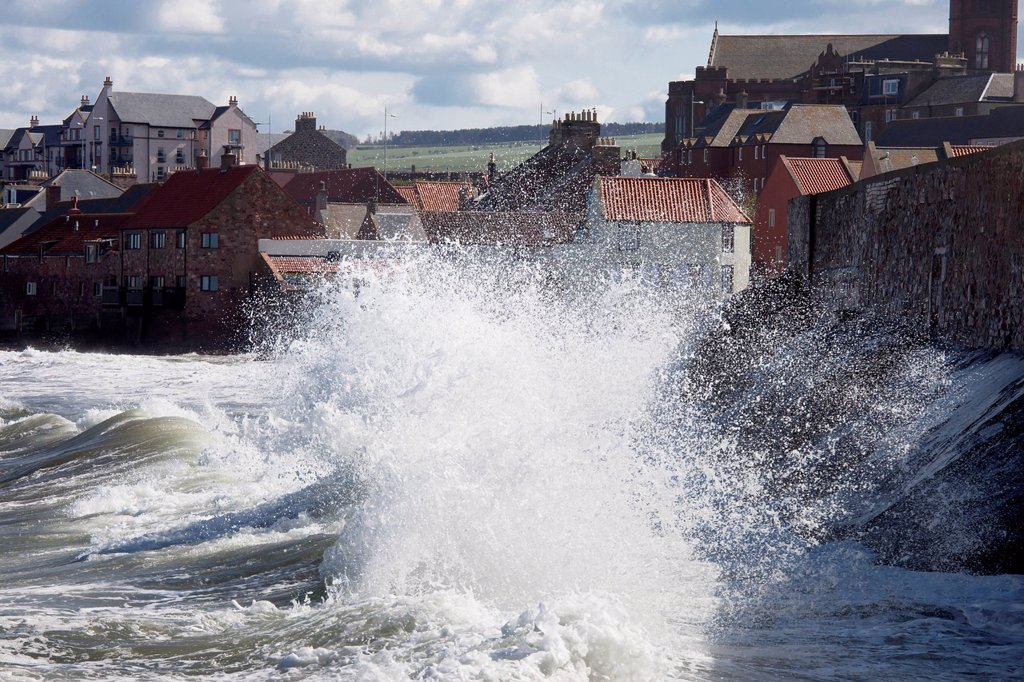 Stock Photo: 1889-81771 Waves crashing against the shore, dunbar scottish borders scotland
