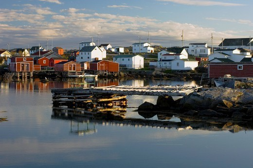 Fishing village, tilting, newfoundland, canada : Stock Photo