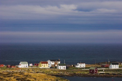 Fishing village along the coast, tilting, fogo island, newfoundland, canada : Stock Photo