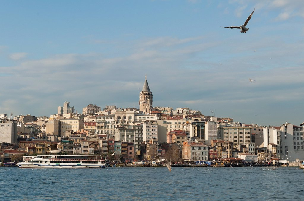 A Bird In Flight Over The Water And A View Of Boats In The Waterfront, Istanbul Turkey : Stock Photo