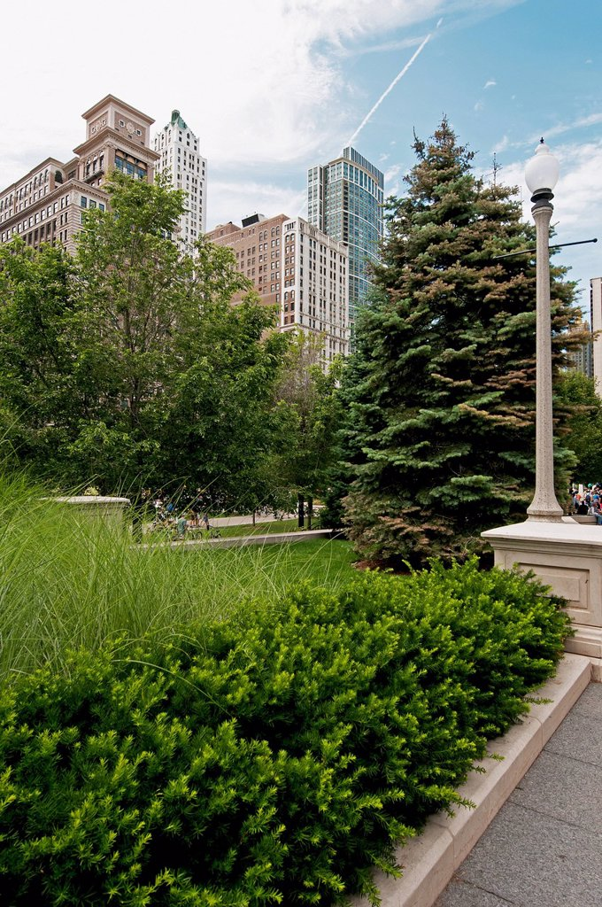 Trees And Landscaping Along A Path With Skyscrapers In The Background, Chicago Illinois United States Of America : Stock Photo