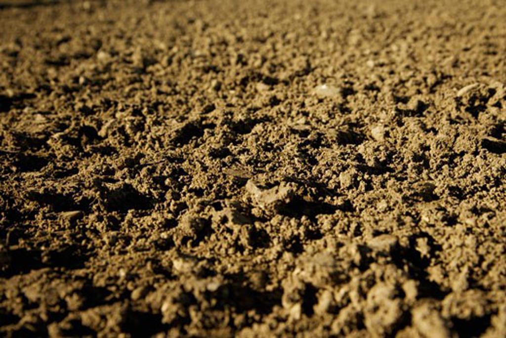 Macro of the ground : Stock Photo