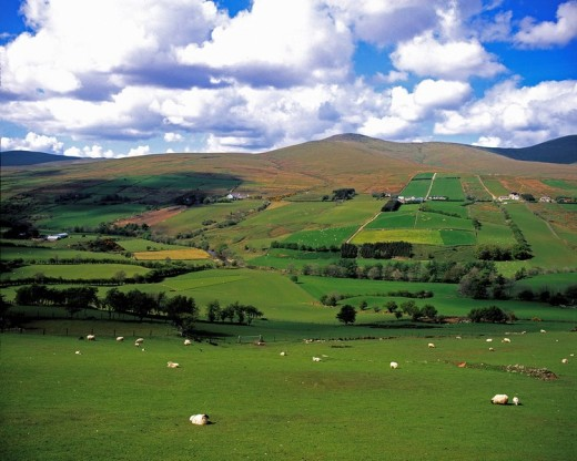 Sperrin Mountains, Co Tyrone, Ireland : Stock Photo