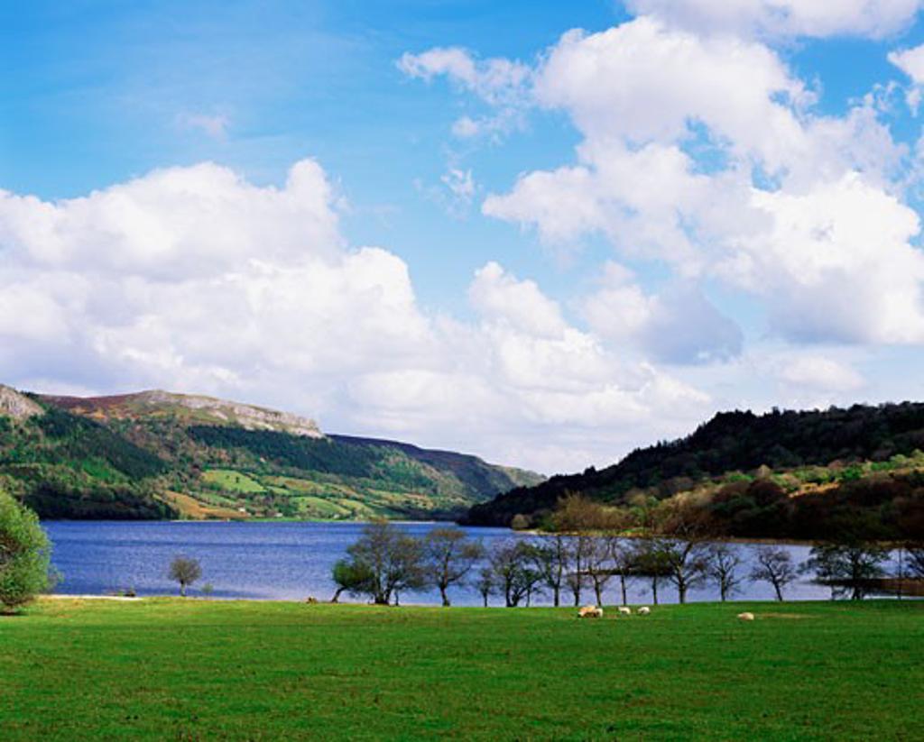Stock Photo: 1889R-11090 Glencar Lake, Co. Leitrim, Ireland