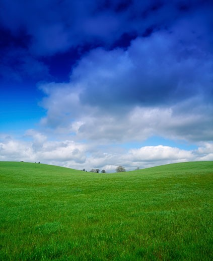 Stock Photo: 1889R-11590 Green meadow in Co Westmeath, Ireland