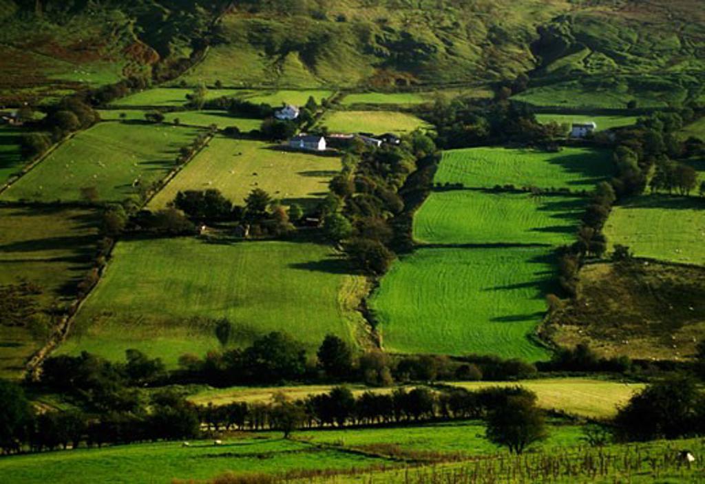 Co Antrim, Glens of Antrim, Ireland : Stock Photo