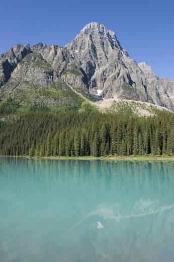 Stock Photo: 1889R-13715 Mount Chephren, Chephren Lake, Banff National Park, Banff, Alberta, Canada