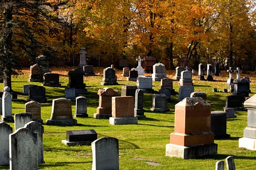 Cemetery in the fall : Stock Photo