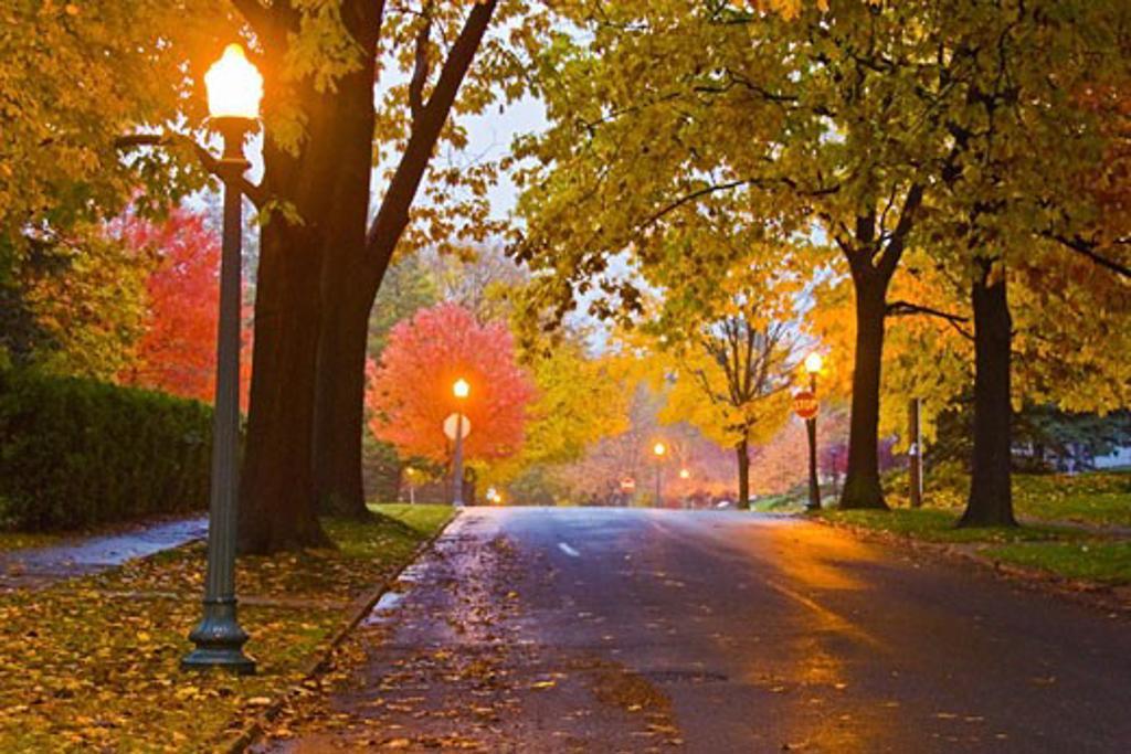 Stock Photo: 1889R-15228 Road in Allentown, Pennsylvania, USA