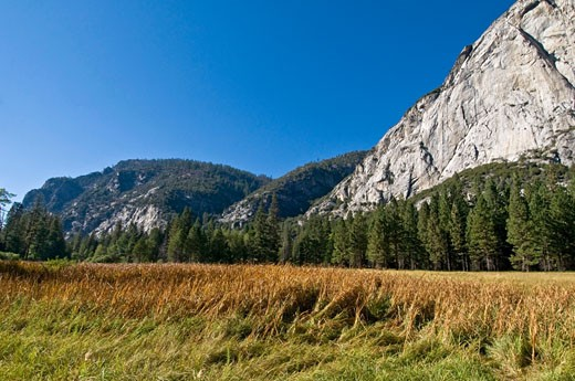 Stock Photo: 1889R-16124 Kings Canyon National Park