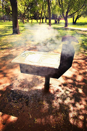 Barbecue in park; Cooking on a barbecue : Stock Photo
