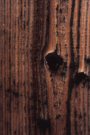 Wood grain and small knot : Stock Photo
