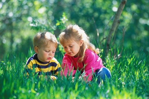 Two children play in the grass : Stock Photo