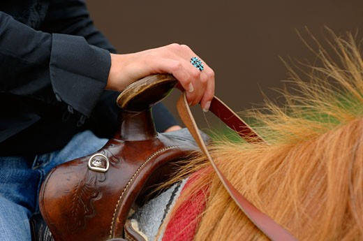 Horse and rider : Stock Photo