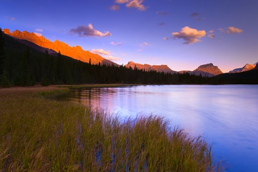 Stock Photo: 1889R-26634 Bow Lake in Banff