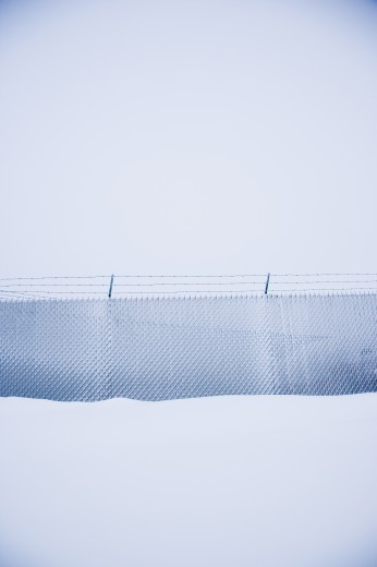 Snow covered fence : Stock Photo