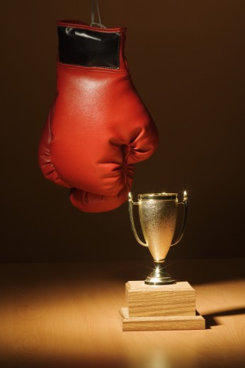 Boxing gloves and trophy : Stock Photo
