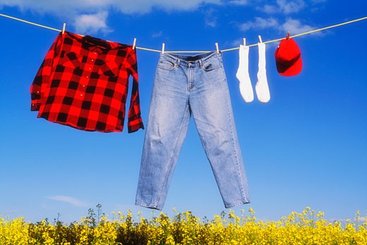 Laundry drying on a clothes line over a canola field : Stock Photo