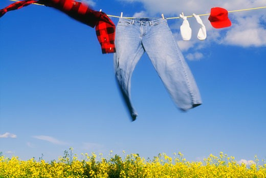Laundry blowing in the wind over a canola field : Stock Photo