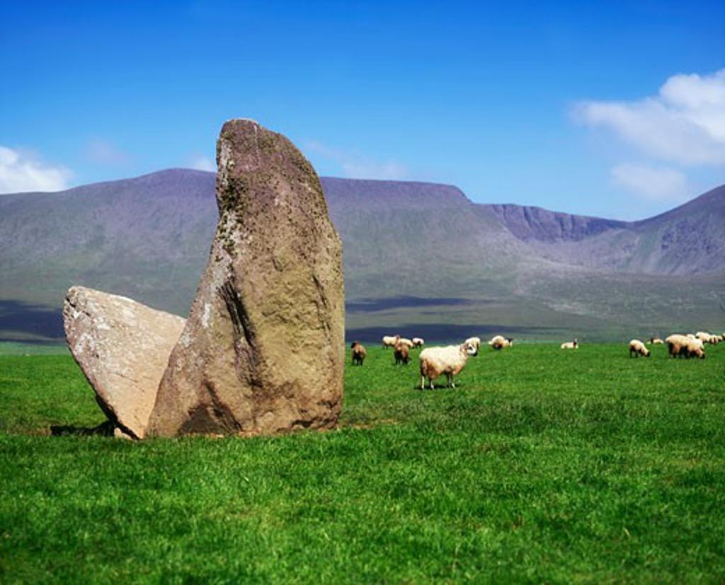Archaelogy, Megalithic Dolmens, Dingle Peninsula, Tomb at Ardamor, Ireland : Stock Photo