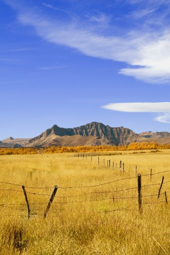 Stock Photo: 1889R-31149 Fence line and mountain in the fall