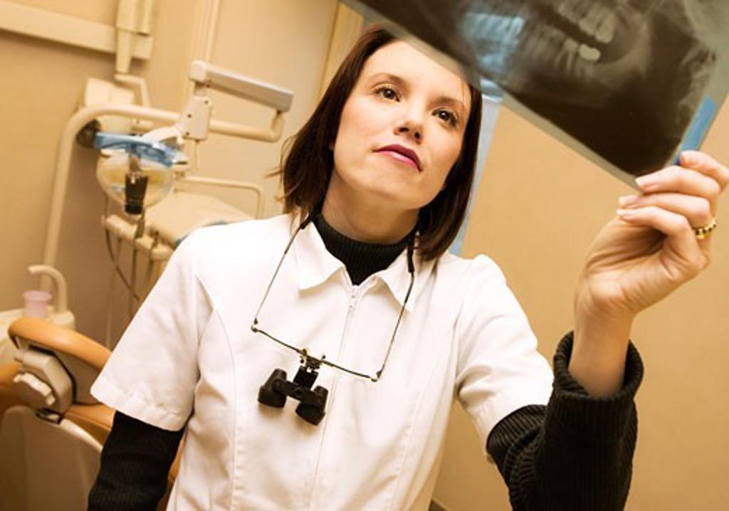 Dentist looking at x-ray : Stock Photo