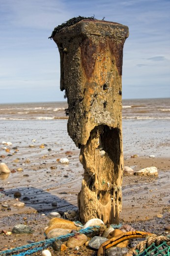Stock Photo: 1889R-37000 Remnants of mooring post, Humberside, England