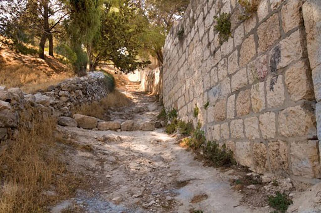 Stock Photo: 1889R-39363 Pathway, Mount of Olives, Jerusalem, Israel