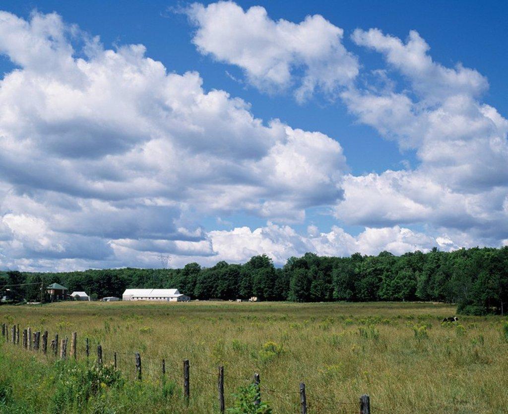 Barn in a field, Saint_Ambriose_de_Kildare, Lanaudiere, Quebec, Canada : Stock Photo