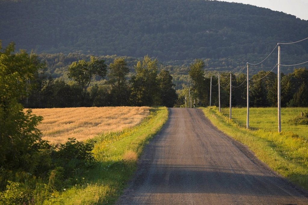Country road : Stock Photo