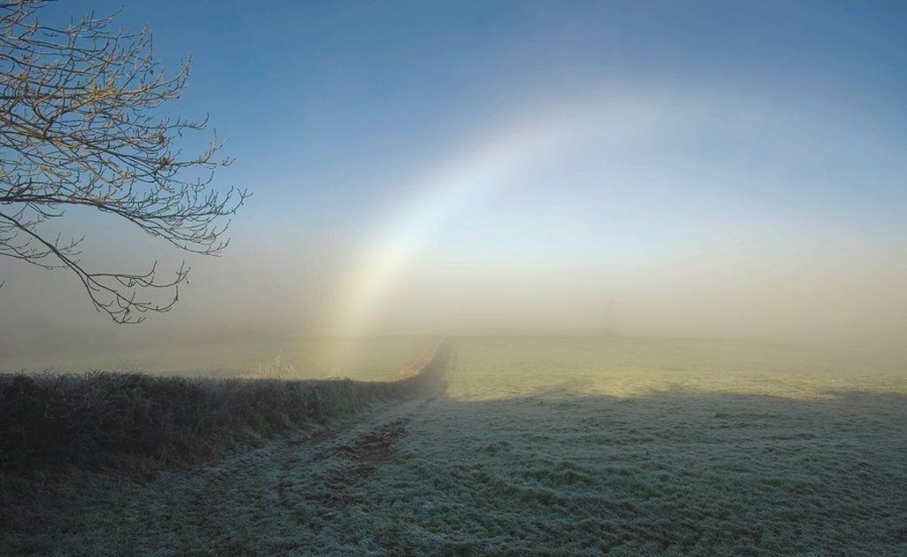 Stock Photo: 1889R-48941 A rainbow over a field