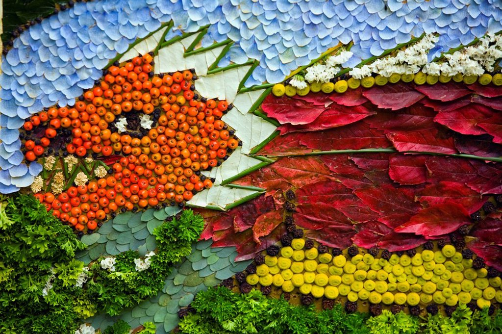 Stock Photo: 1889R-50517 detailed design of a dragon made of berries, moss and petals