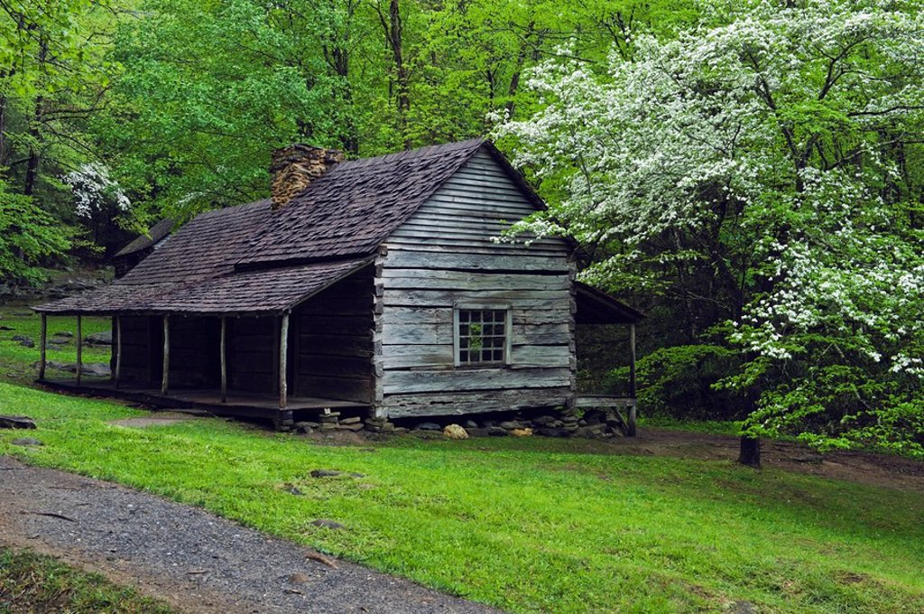 Stock Photo: 1889R-52597 tennessee, united states of america, noah bud ogle pioneer cabin and trees in the great smokey mountains national park