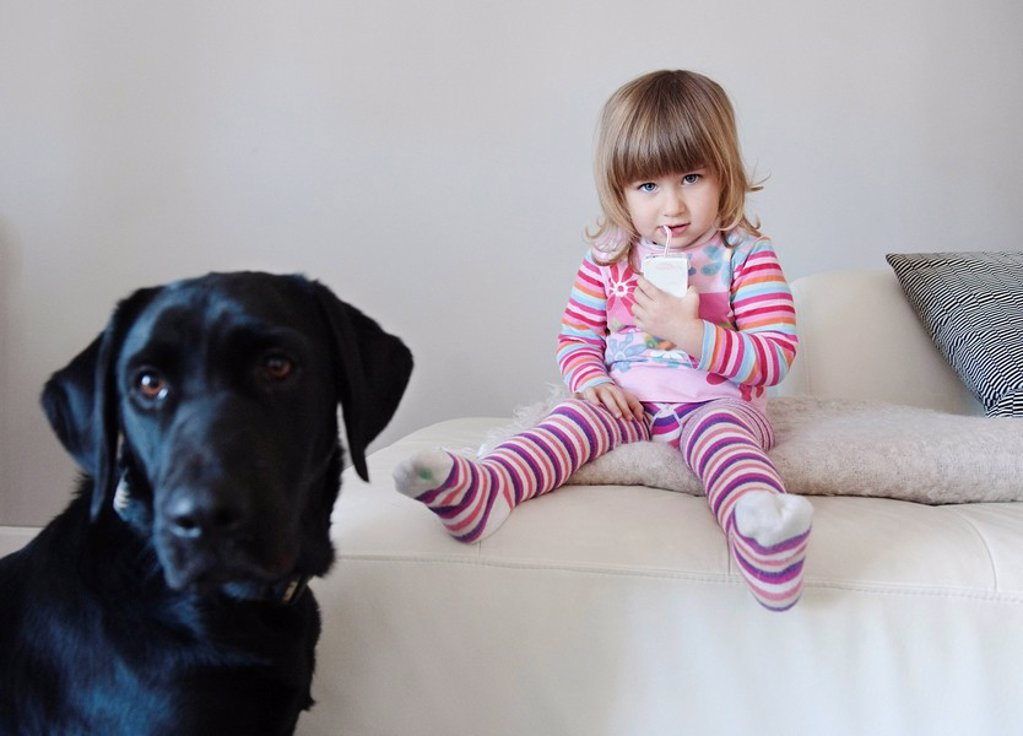 cadiz, spain, a young girl enjoys a juice box while sitting beside her pet dog : Stock Photo