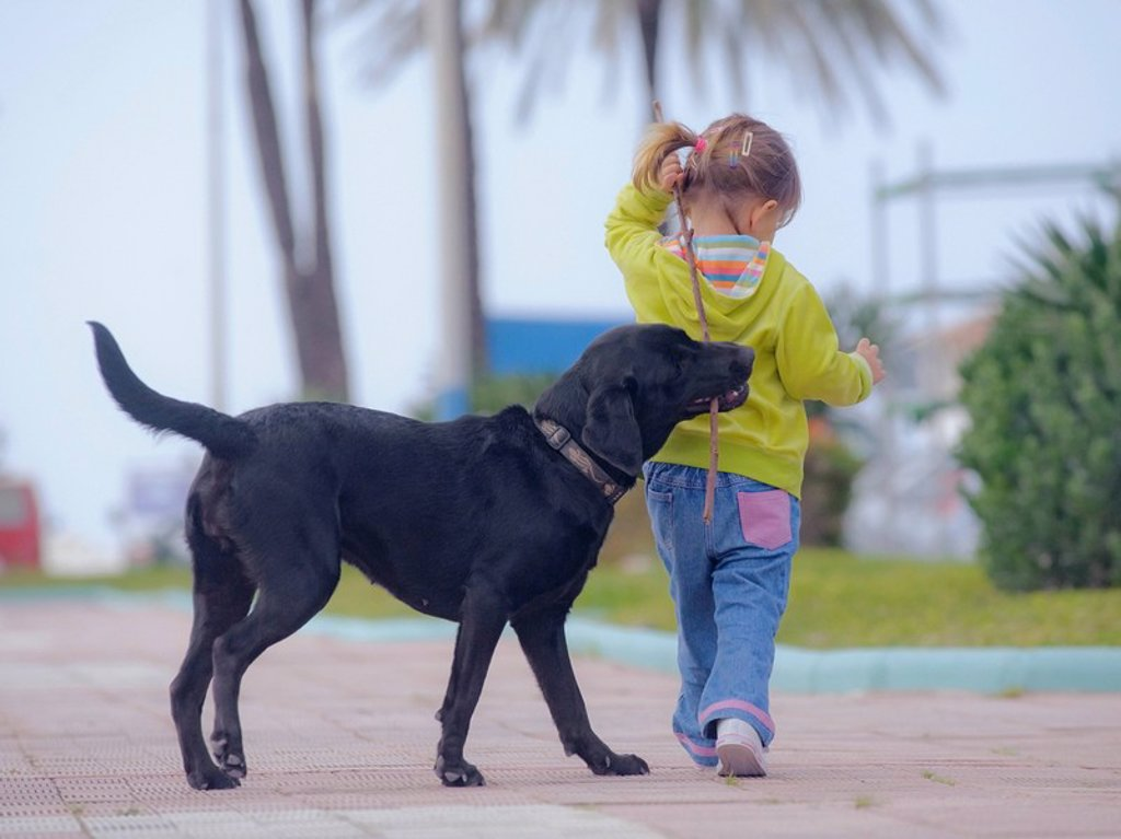 Stock Photo: 1889R-55136 benalmadena, malaga, andalusia, spain, a young girl walks with her dog