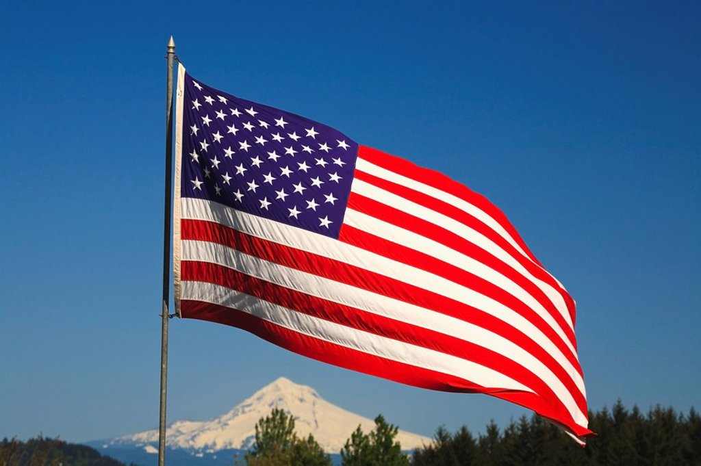 The American Flag : Stock Photo