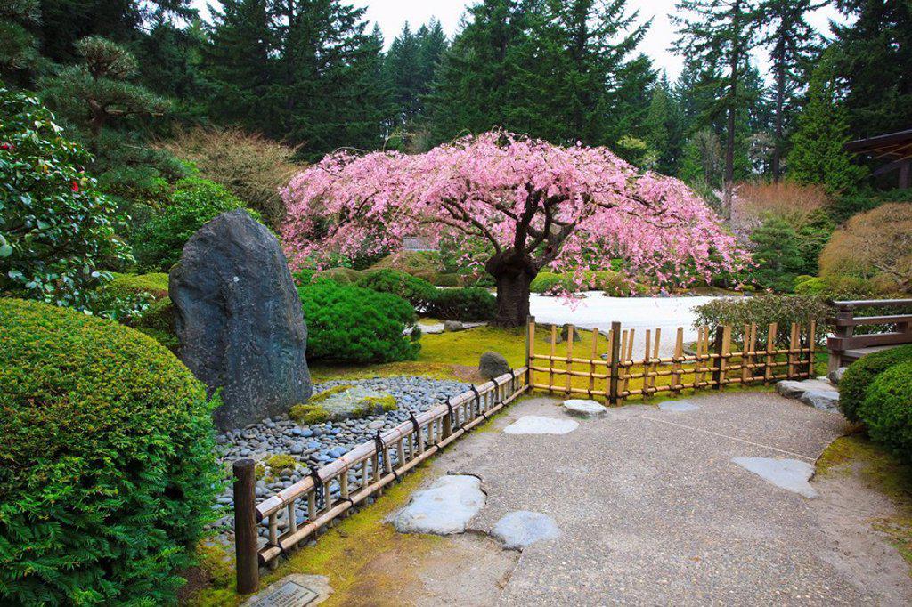 A Path Leading Through A Garden : Stock Photo