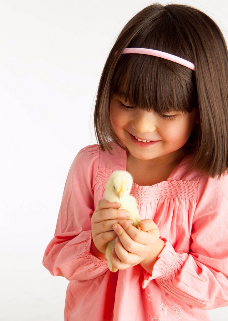 A Girl Holding A Chick : Stock Photo
