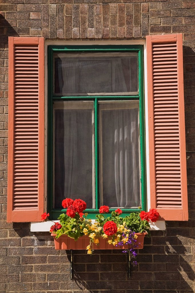 Window With Flower Box On Rue Monseigneur De Laval In The Upper Town Area Of Old Quebec City, Laval, Quebec, Canada : Stock Photo