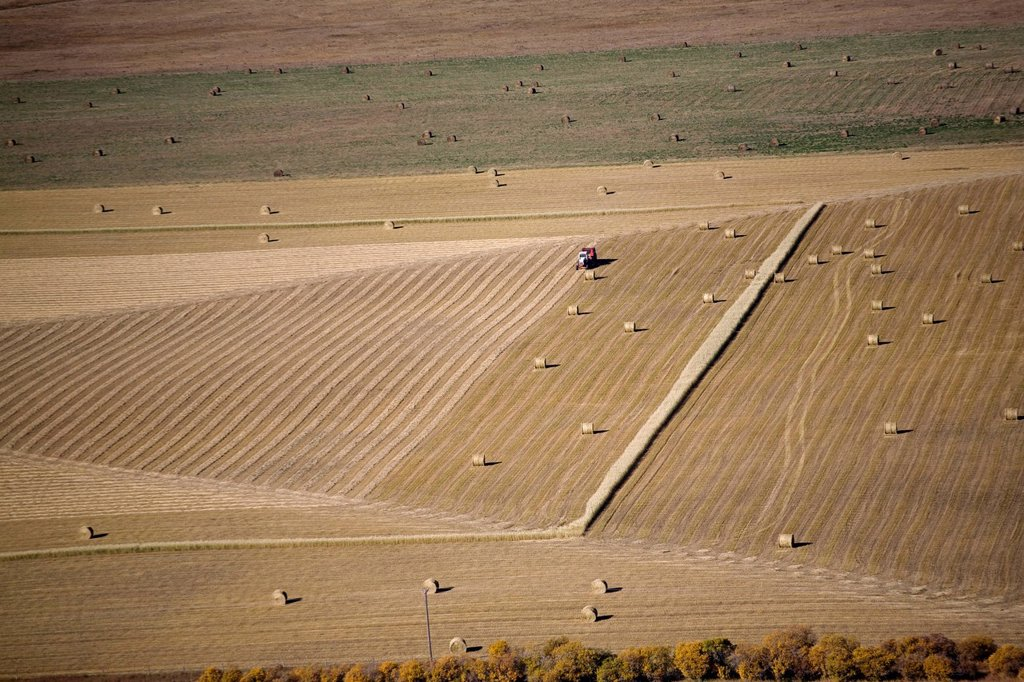 aerial view of a field with hay bales and a baler, alberta, canada : Stock Photo