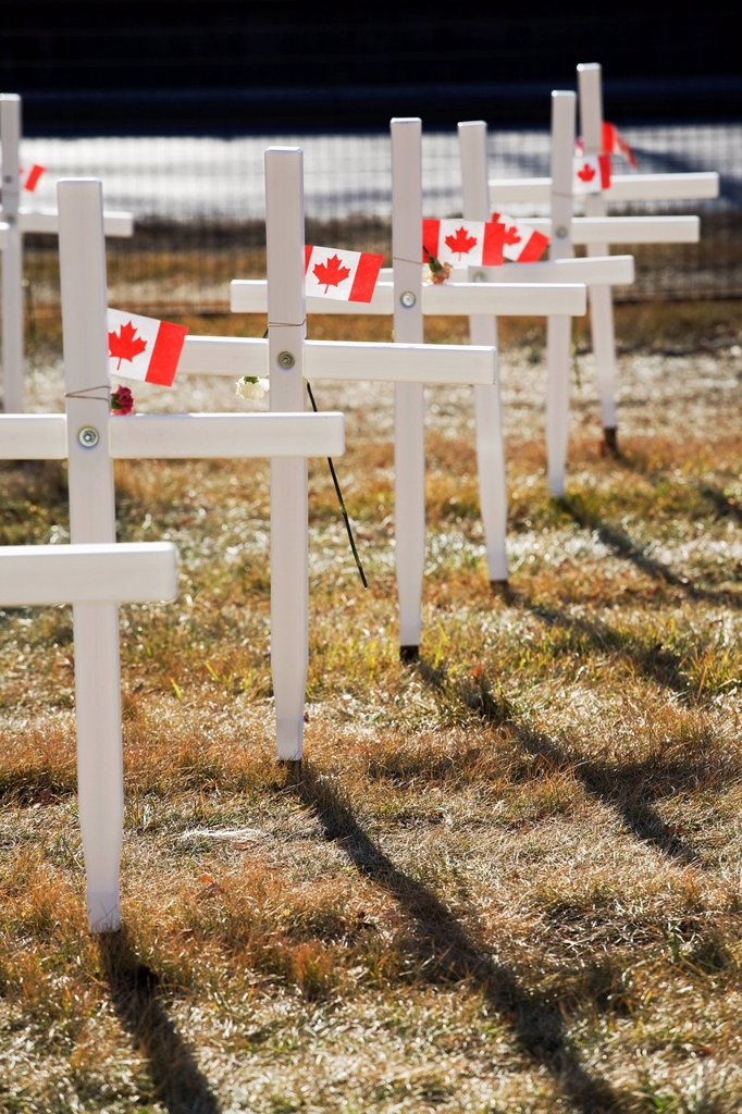 Stock Photo: 1889R-62186 white crosses in a field with canadian flags, calgary, alberta, canada
