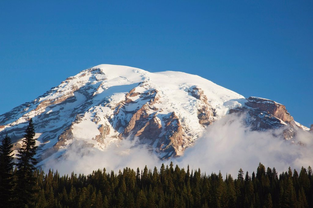 mount rainier against a blue sky in mt. rainier national park, washington, united states of america : Stock Photo