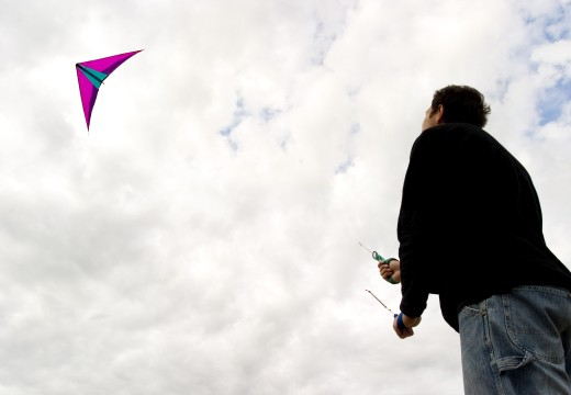Man flies a kite : Stock Photo